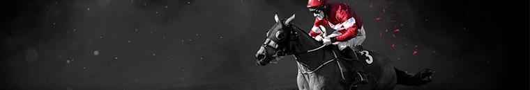 Bet365 Horse Racing Betting